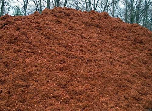 Hemlock Fir Fine Mulch