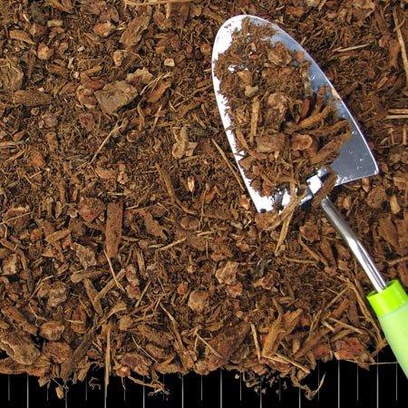 Hemlock Fir Medium Mulch